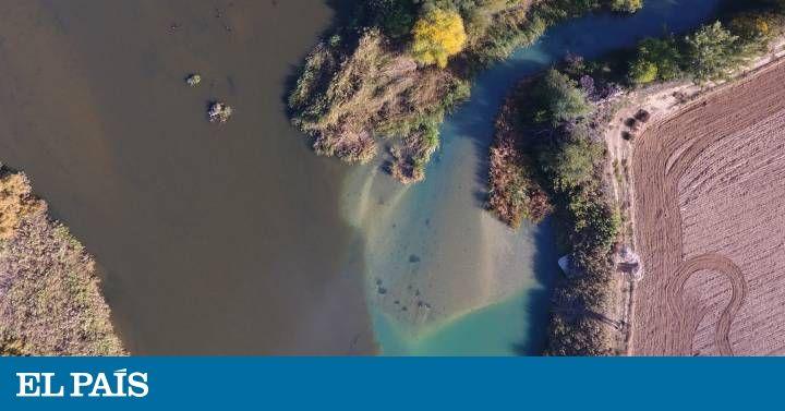 El río es incapaz de diluir todos los residuos urbanos e industriales que le llegan desde sus afluentes