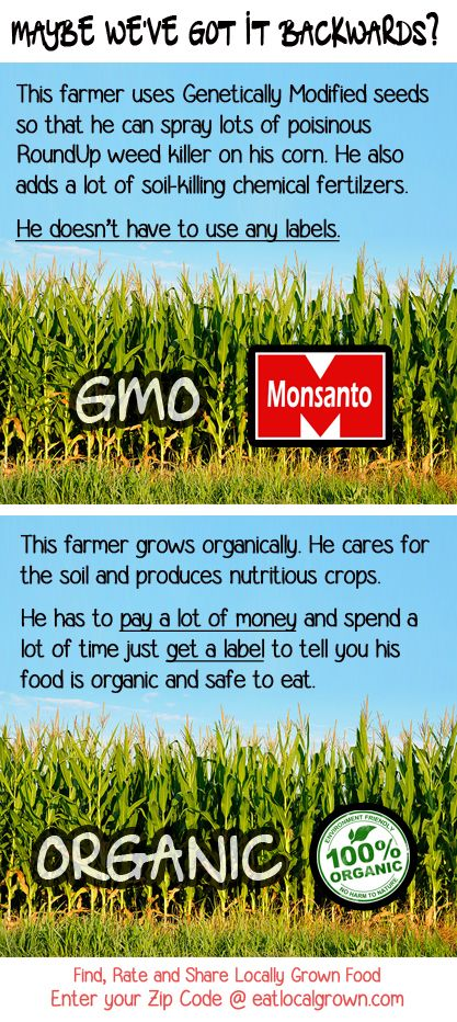 It's clear that Ag money wants an ignorant consumer. GMO vs Organic: What should we be labeling here...? And Organic is so much safer for us than GMO's !!!