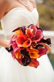 Multi-colored mini-calla lilies make for a stunning fall bouquet idea! Mini-callas are available year-round in a wide variety of different colors from GrowersBox.com.Ideas, Fall Wedding Bouquets, Fall Bouquets, Calla Lilies, Colors, Calla Lilly, Fall Weddings, Fall Wedding Flower, Fall Flower