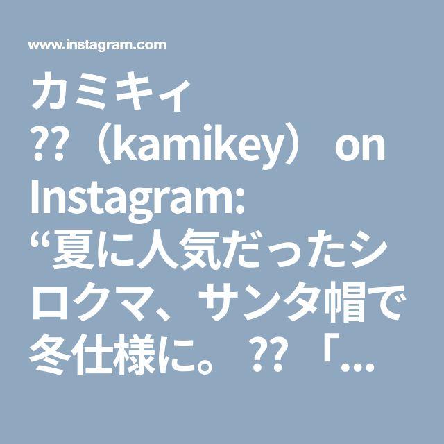 """カミキィ 🇯🇵(kamikey) on Instagram: """"夏に人気だったシロクマ、サンタ帽で冬仕様に。 ✴︎ 「クリスマスベル」「しろくま」「サンタクロース」「雪だるま」「サンタボス」「リボン」「シンプルリース」の作り方動画は、YouTubeチャンネル【創作折り紙…"""" • Instagram"""
