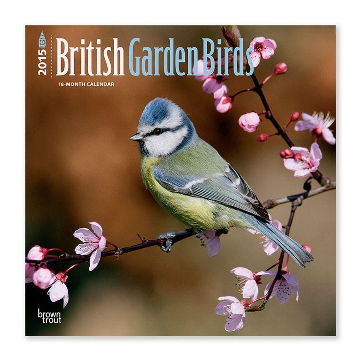 British Garden Birds 2015 wall calendar   2015 diaries and calendars   Natural History Museum Online Shop
