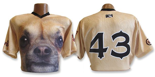 Texas baseball team jersey features face of Chihuahua