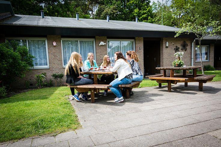 """Het Nolderwoud, www.hetnolderwoud.upps.eu, Eine Oase der Ruhe, Raum und Komfort in Drenthe in der Nähe der Ferienanlage von Zuidwolde, finden Sie Gruppenunterkünfte und Bungalows """"Het Nolderwoud"""". Hier in der Mitte von einem Waldgebiet können Sie die Atmosphäre der Drenthe kosten. Das kleine Bungalow ist ideal für junge Familien, Gruppen und Senioren. Als Herzstück des Resorts gibt es einen wunderbaren Spielplatz mit Trampolin, Rutsche, Schaukel, Wippe...Sie finden ebenso eine Sauna bei uns."""