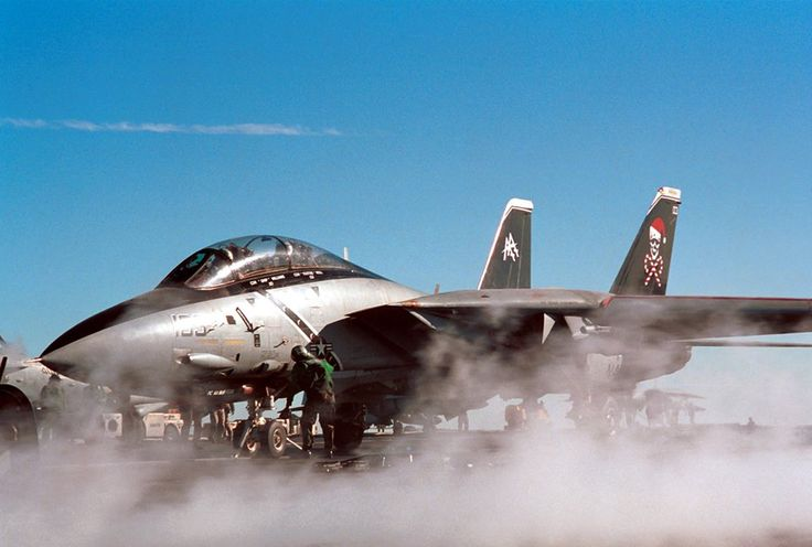 Jollie Roger ! Grumman F-14 Tomcat