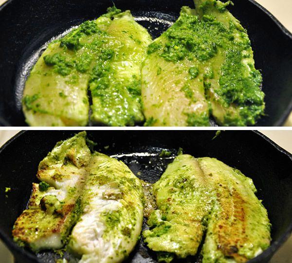 cilantro-lime tilapia tacos | Food | Pinterest