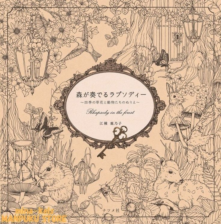 Coloring Book Rhapsody In The Forest From JAPAN F S With Tracking Number NEW