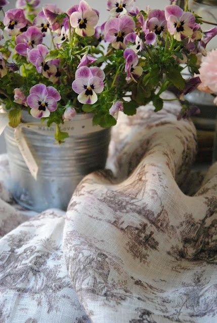 Violets in a galvanized bucket - bit more color, but I love the way this works - posted by Lady-Gray-Dreams - #ShabbyChic inspiration #Cottage #HomeDecor tå√