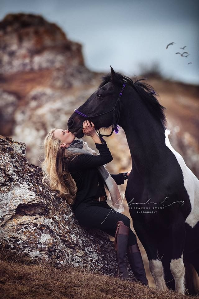 Pin By Anna Braun On Horses Konie
