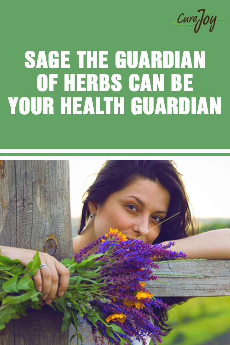 Sage: The Guardian of Herbs Can Be Your Health Guardian ==>