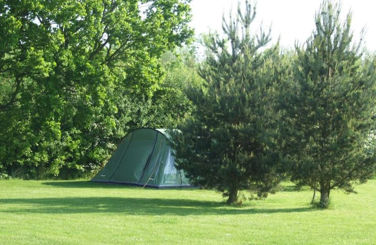 Willow House Caravan Park Wigginton, York, North Yorkshire, UK, England. Caravan Park. Campsite. Holiday. Camping. Outdoors. Pets Welcome.