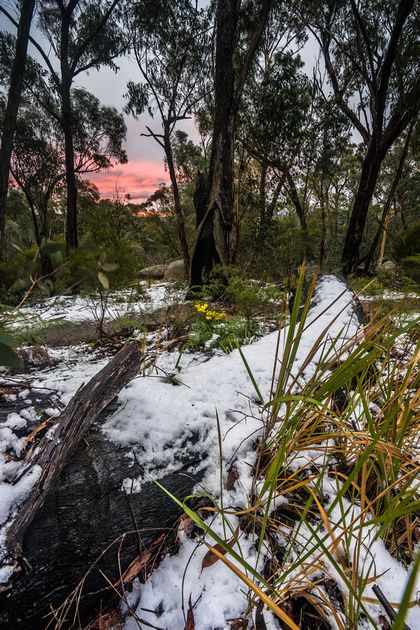 Winter in South-East Queensland is awesome! High friction on the cracks at Frog Buttress, beautiful cool and clear days and you don't have to get up as early to get photos of sunrise. It's pretty m...