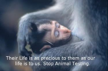 Quotes Against Animal Testing From Scientists Quotes About Medical