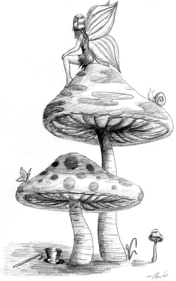 Fairy Girl and Two Mushrooms by ~bigcatpants on deviantART