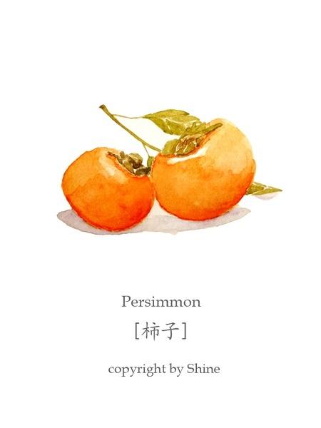 柿子 かき Persimmon…_来自qingpingwang的图片分享-堆糖网