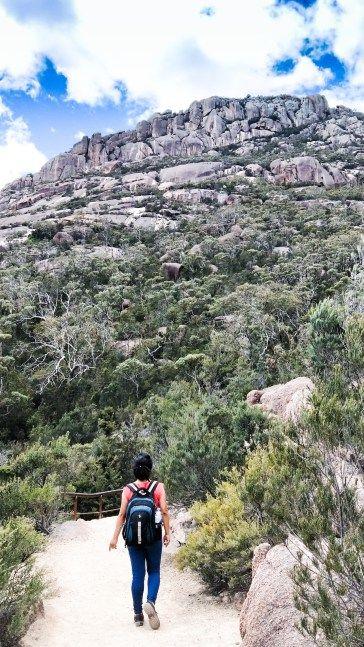 Tasmania - White Sand, Shells and Wineglass Bay - Road Trip