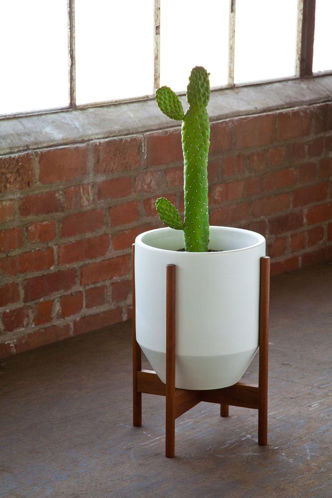 Ceramic Hex, Wood Stand