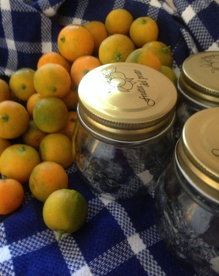 Kumquats ready for prep!