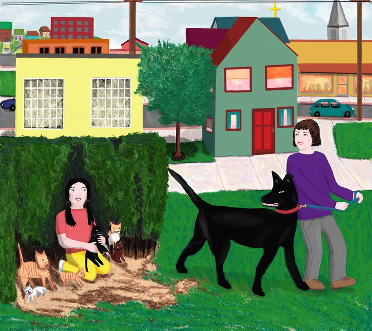 """Dana picked up the black kitten. """"For finding my cat, Sidney can take a kitten,"""" she said, holding it out to the growling dog. """"Look, Sidney, it matches you!"""" she told him. https://cerealauthors.wordpress.com/2016/03/30/the-spy-game-2-character-quotes/"""