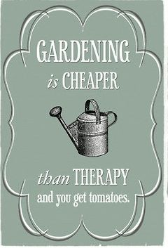 Thoughts On Gardening... or.. Gardening is cheaper than Therapy and you get FLOWERS!