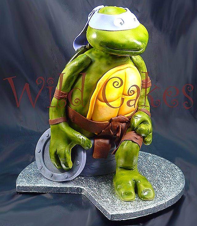 54 best turtle images on pinterest turtles turtle and - Comment arreter de faire pipi au lit a 15 ans ...