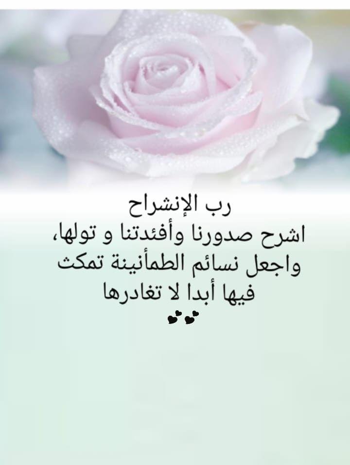 Pin By Eman Duniya On عربي رسائل من تصميمي Trust God Rose Flowers