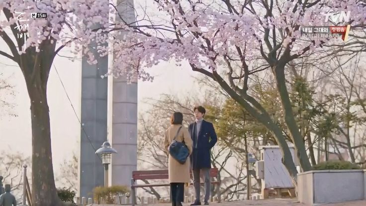 """""""I'm saying this because you are my first love and you're still shining... will you be my bride?"""" — goblin (2016)"""""""