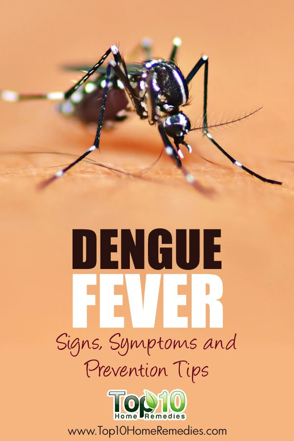 Dengue Fever: Signs & Symptoms.  How to Prevent ‪#‎Dengue‬ Fever.