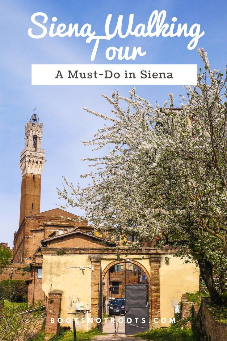 Italy is full of history and Siena is no exception. Siena Walking Tours will guide you through the city's history and show you areas you would never see as a tourist.