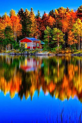bonitavista:  Sweden photo via teneil