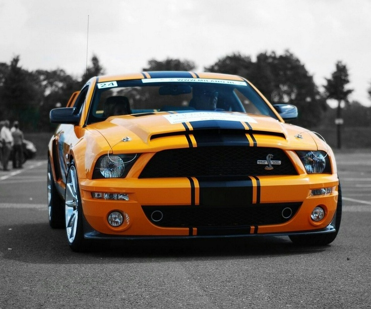 25 best ideas about Shelby cobra gt500 on Pinterest  Ford
