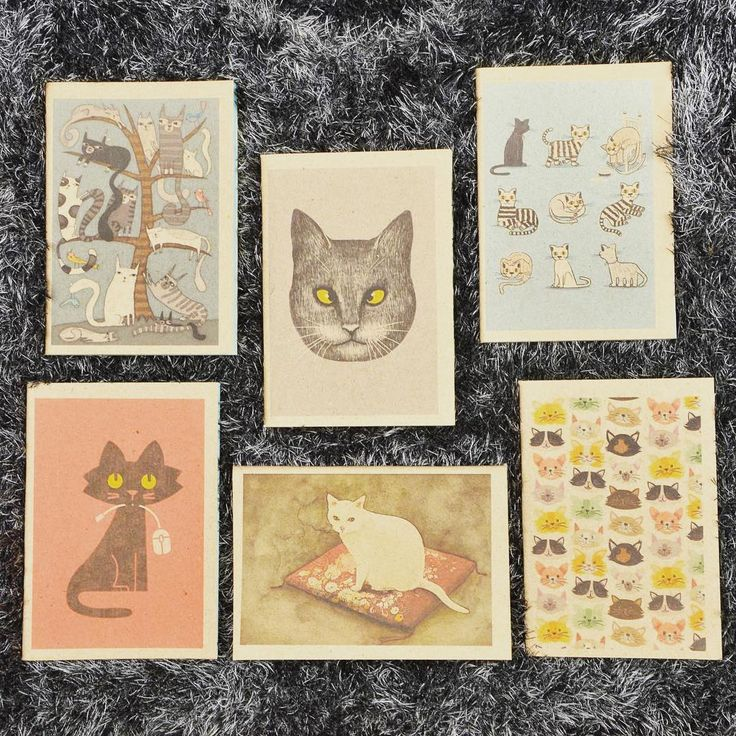 Fluffy friends 🐈  cat graphic booklet szputnyik notebook stationery furry