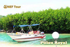 Royal Island memiliki fasilitas lengkap dan paket wisata yang menarik selain menikmati sunset dan wisata mangrove, yaitu kunjungan ke pulau-pulau wisata untuk menikmati keindahan alamnya yang berbeda beda, Spot Snorkling yang beragam, Wisata Memancing di Rumpon yang banyak ikannya, kemudian ada wisata air seperti bermain jetski, banana boat, sofa boat, kano, atau sekedar berenang bermain di tepi pantai pasir putih.