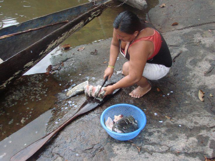Met een houwer(kapmes) schoonmaken van de Anjumara vis
