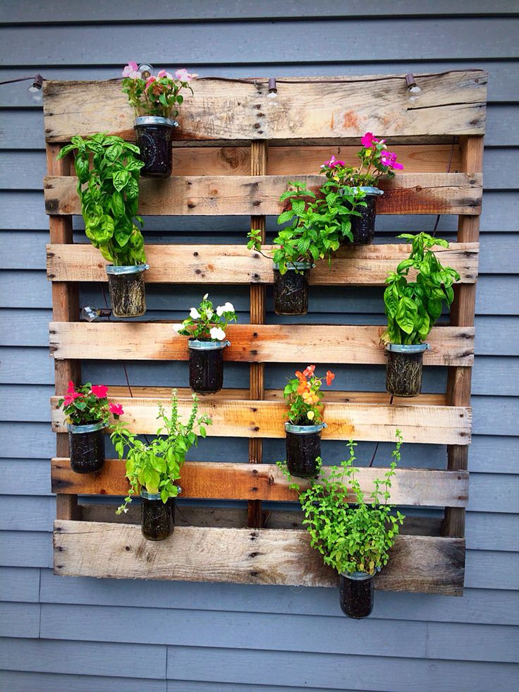My diy wooden pallet wall planter... Have a mix of my ...