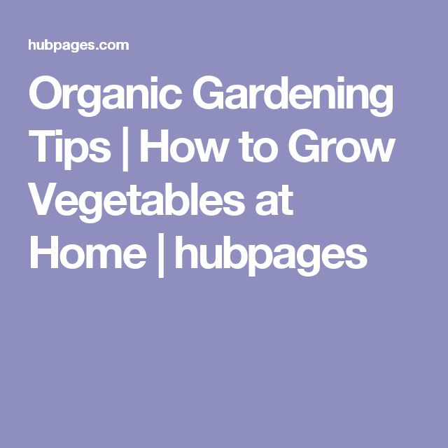 Organic Gardening Tips | How to Grow Vegetables at Home | hubpages