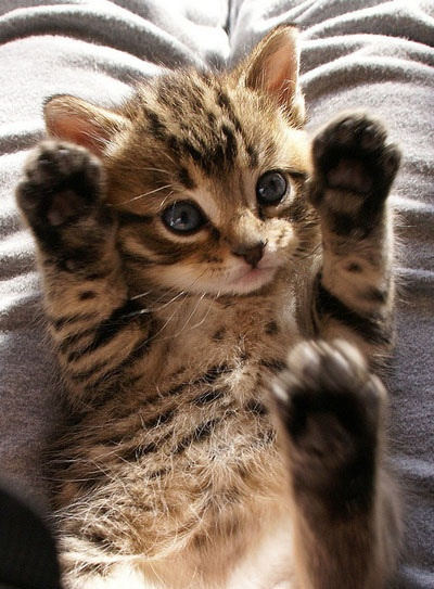 TripLe high five!
