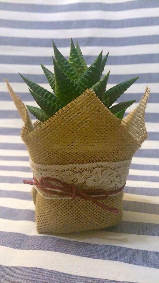 Maceta de 7 cm presentada en tela arpillera yute de - Saco de arpillera ...