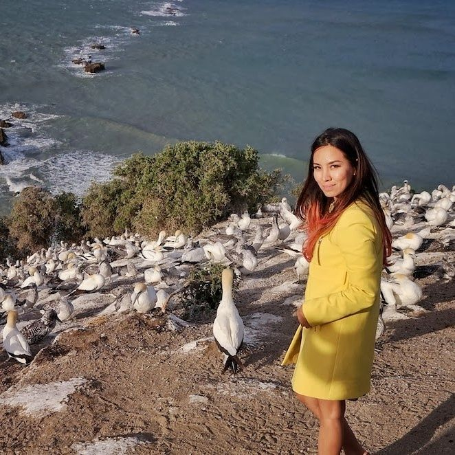 Susana santai sore bersama sekumpulan Gannet di Hawke's Bay.    #hawkesbay #santai #sore #gannet #pemandangan #newzealand #newzealandnatural #liburan #luxury #luxurytravel #luxurynz #vacation #getaway #traveling #trip #ilovetravel #jetsetter #visit #view #traveling #visiting #instago #holiday #fun
