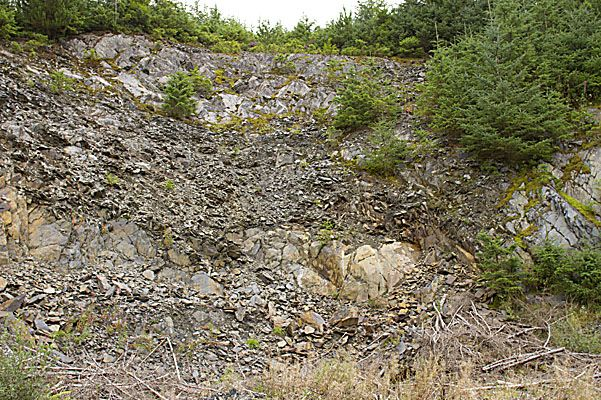 Quarry 18 – Faulting has juxtaposed  the Cwmere, Derwnlas and Rhayader Mudstones