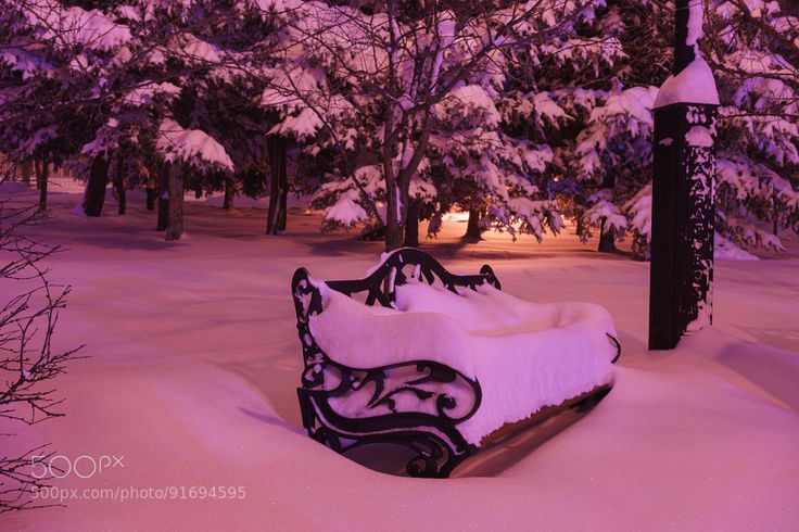Snow covered bench in the park at night by svetlanabogomolova