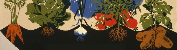 Guerrilla Gardening on Bilby Street | Halifax Garden Network