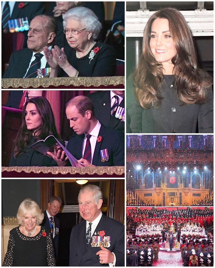 The Duke and Duchess of Cambridge and other members of the Royal Family are at the annual Festival of Remembrance tonight at the Royal Albert Hall. The Festival commemorates all those who have lost their lives in wars and conflicts. Highlights of the performance include special guest artists, military bands and a drumhead service. Michael Ball and Alfie Boe, Laura Mvula, Birdy and Alexander Armstrong are performing alongside the Royal Air Force Squadronaires and the Band of HM Royal…