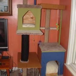 Homemade cat tree.