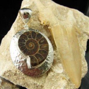 124 Ammonite Fossil Pendant