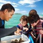 Jean Michel Cousteau Fijian Island Resort