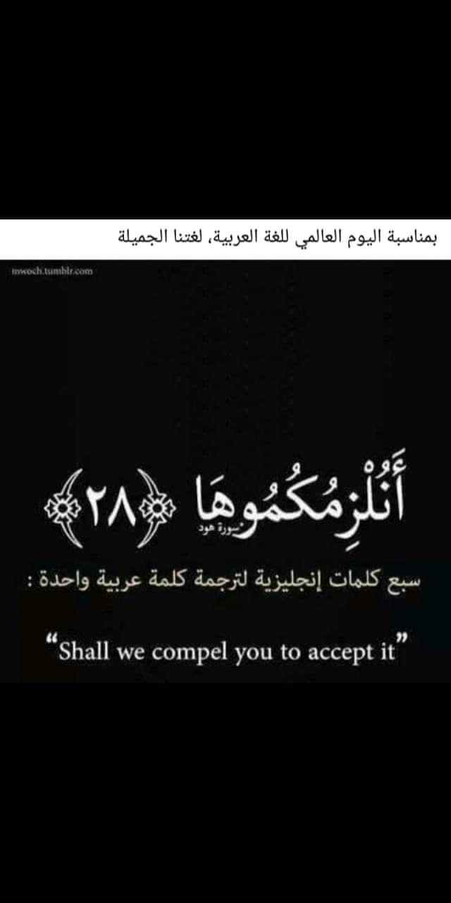 Pin By Essam On اللغة العربية Holy Quran Islam Quran Arabic Calligraphy