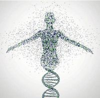 Spotlight on Genetics : Naturejobs