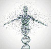 Spotlight on Genetics : Naturejobs
