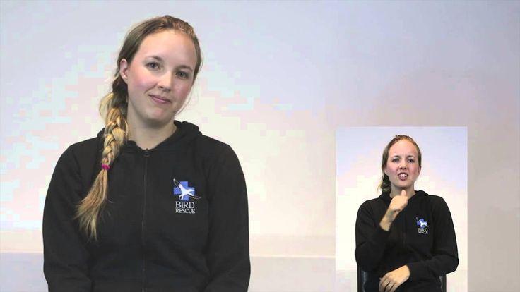 Sign Language Week: Day-1 (Monday)