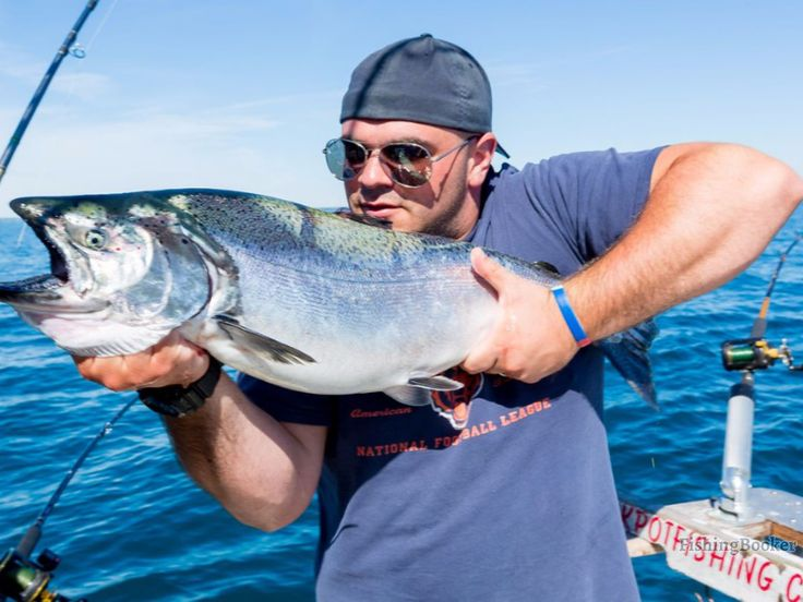 Lake Michigan Fishing Charters is one the best charter of Chicago ,we always provide you a more fun with safety . Chicago Fishing Charters  is definitely to ensure that  is the best fishing experience for you on Lake Michigan.